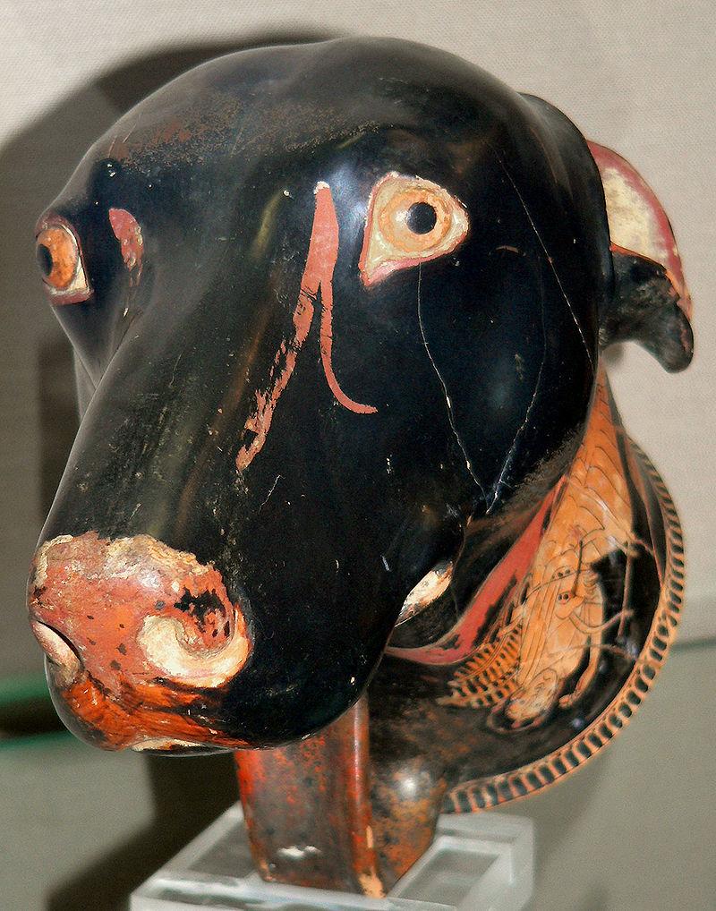 antyczna-grecja-hellada-starożytna-psy-zwierzęta
